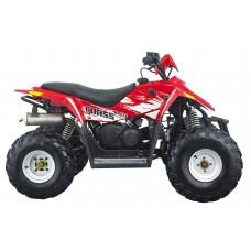 Hisun HS110 Sport ATV, 4 takt EFI motor